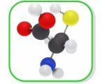 PEG Reagents by Functional Group